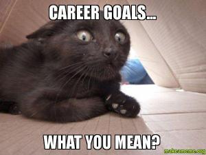 Career-goals-What